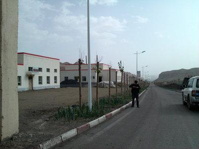 矿区周边绿化